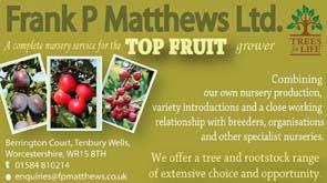 Frank P Matthews Ltd
